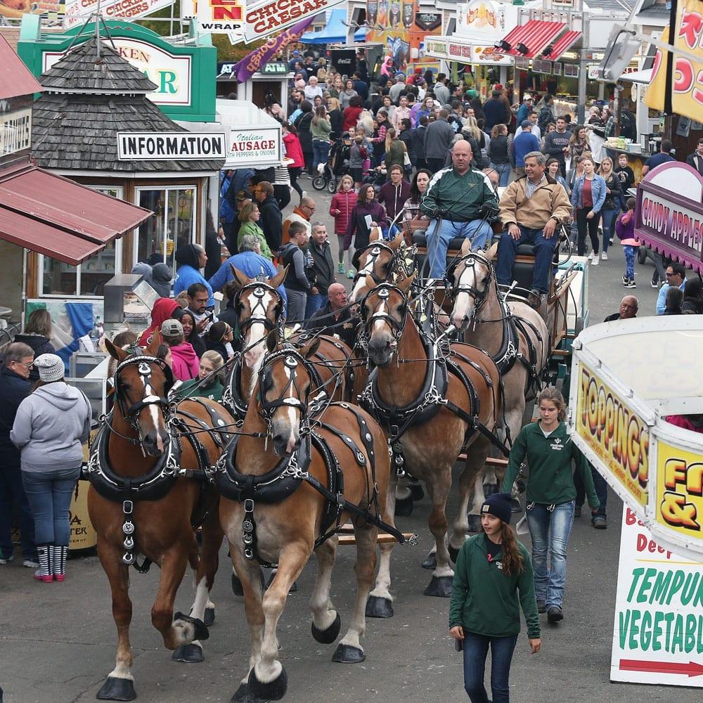 topsfield fair 6 horse hitch